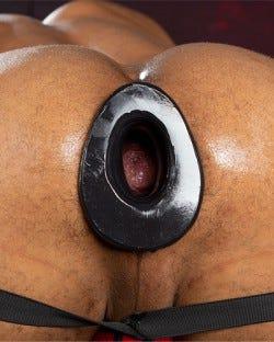 Pig Hole Original - 5 Sizes