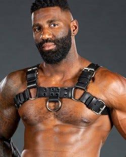 Back Alley Bulldog Harness