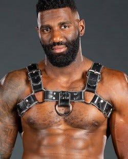 Bulldog Harness 2.0 Grey