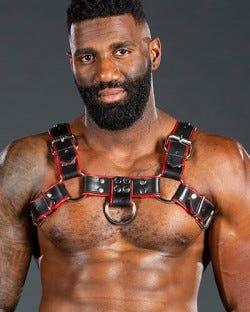 Bulldog Harness 2.0 Red