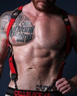 Spartan Reversible Harness - Red