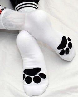 Sk8erboy Socks - Puppy