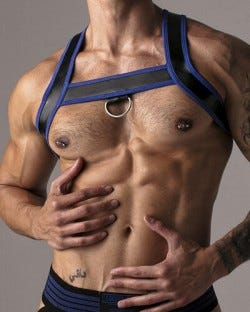 Harder Harness - Blue