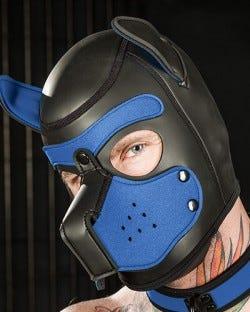 Neoprene Puppy Hood Cobalt