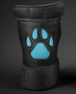 Open Paw Puppy Glove - Aqua