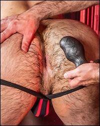 Ergo Buttplug - 5 Sizes